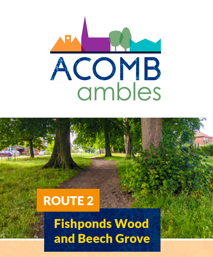 Walks in Acomb, York - Fishponds Wood and Beech Grove